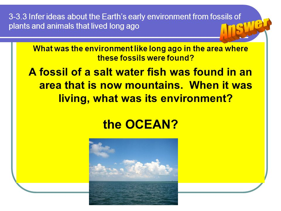 3-3.3 Infer ideas about the Earth's early environment from fossils of plants and animals that lived long ago