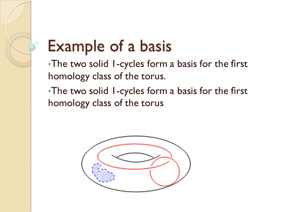 Example of a basis The two solid 1-cycles form a basis for the first homology class of the torus.