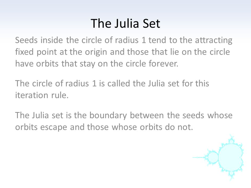 The Julia Set