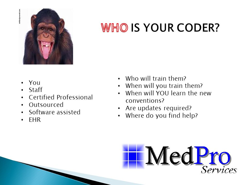 WHO IS YOUR CODER Who will train them You When will you train them