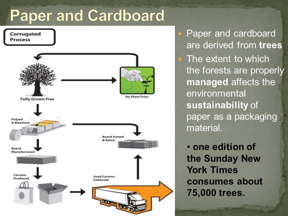 Paper and Cardboard Paper and cardboard are derived from trees