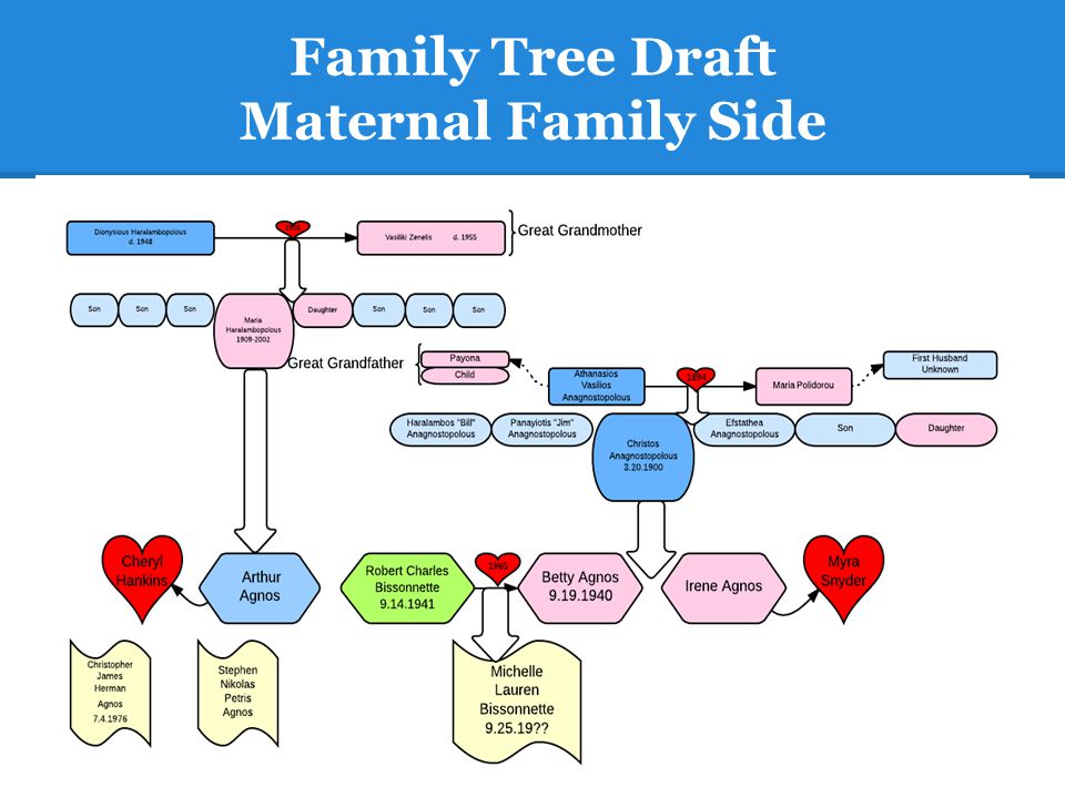 Family Tree Draft Maternal Family Side
