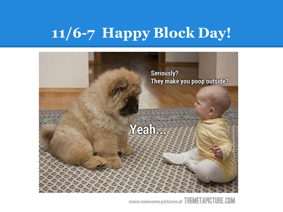 11/6-7 Happy Block Day!