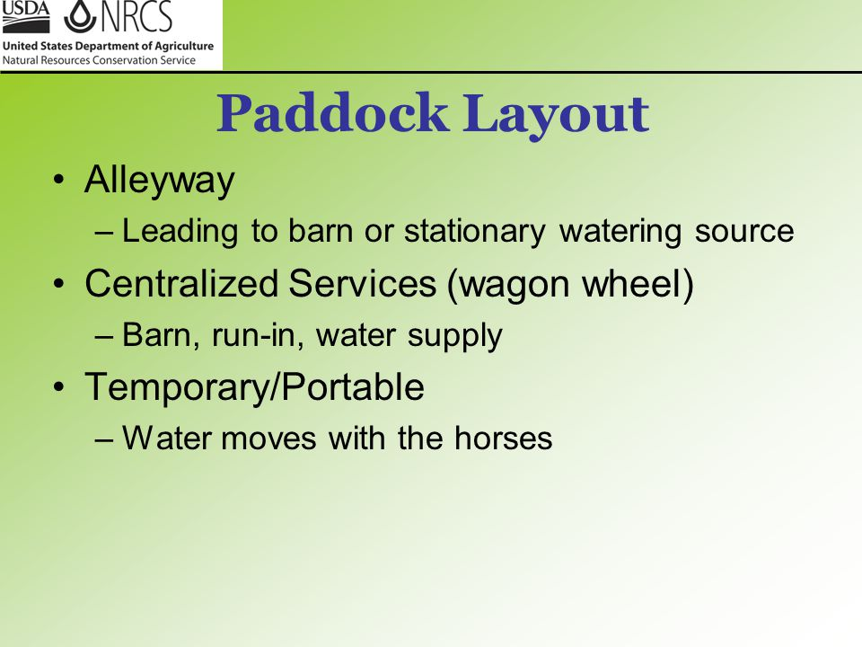 Paddock Layout Alleyway Centralized Services (wagon wheel)