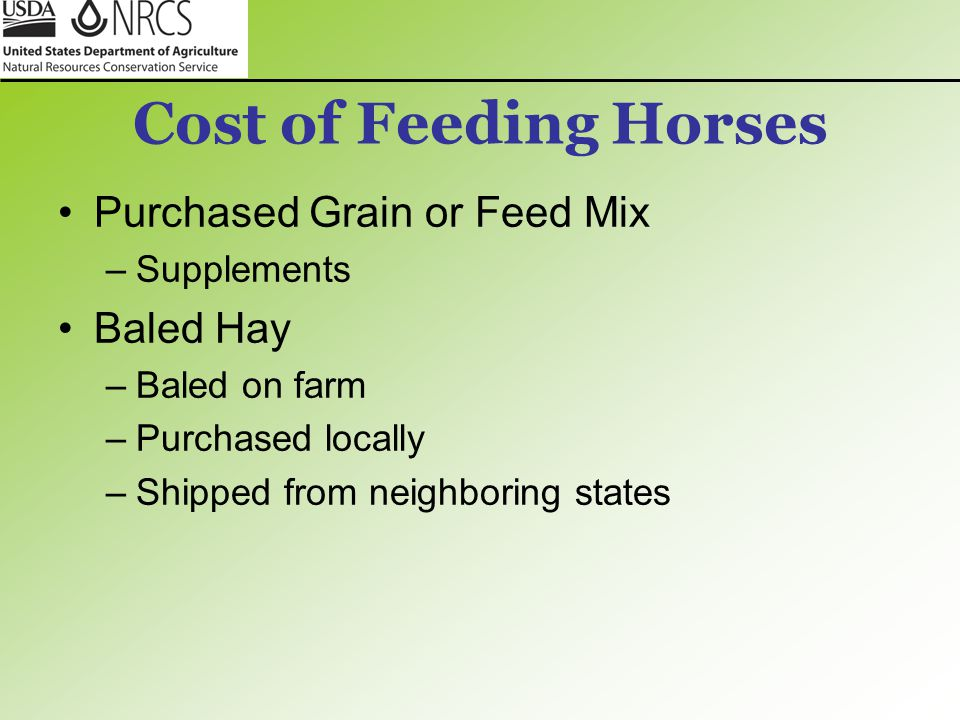 Cost of Feeding Horses Purchased Grain or Feed Mix Baled Hay