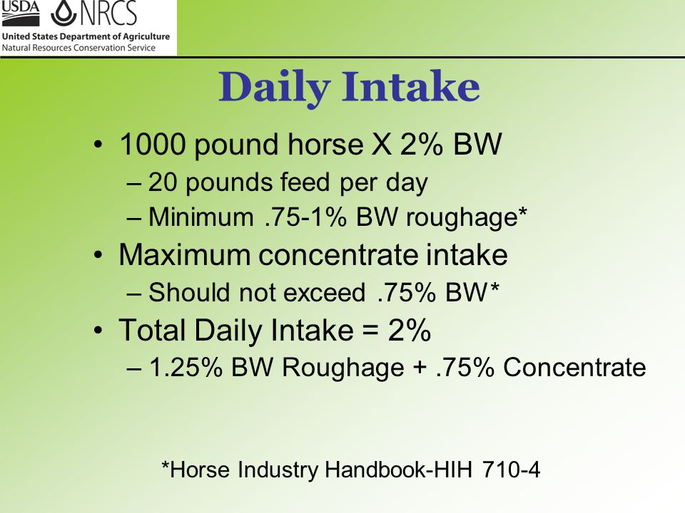 Daily Intake 1000 pound horse X 2% BW Maximum concentrate intake