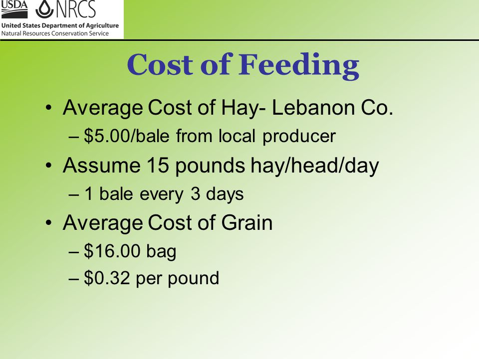 Cost of Feeding Average Cost of Hay- Lebanon Co.