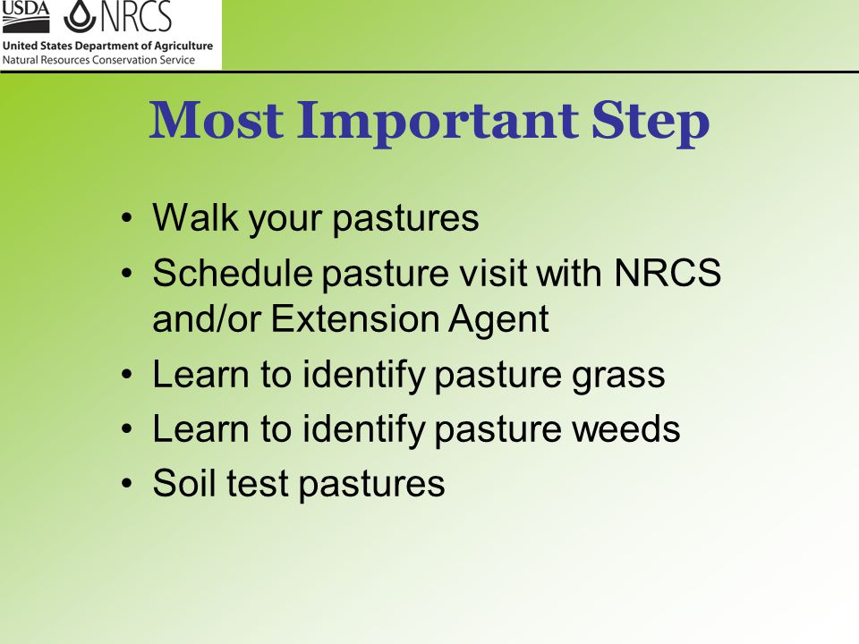 Most Important Step Walk your pastures