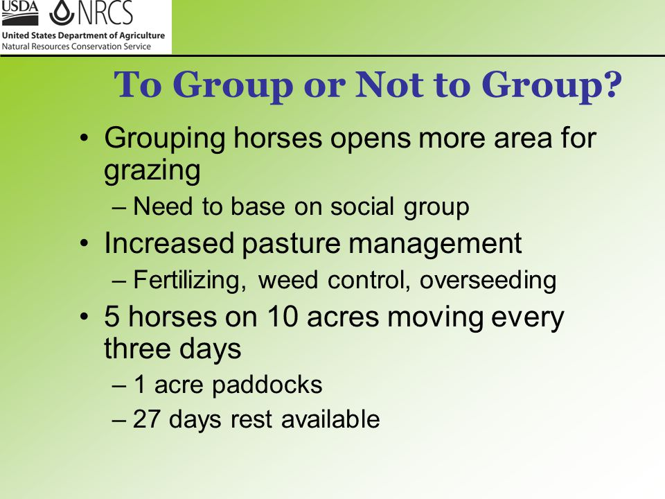 To Group or Not to Group Grouping horses opens more area for grazing