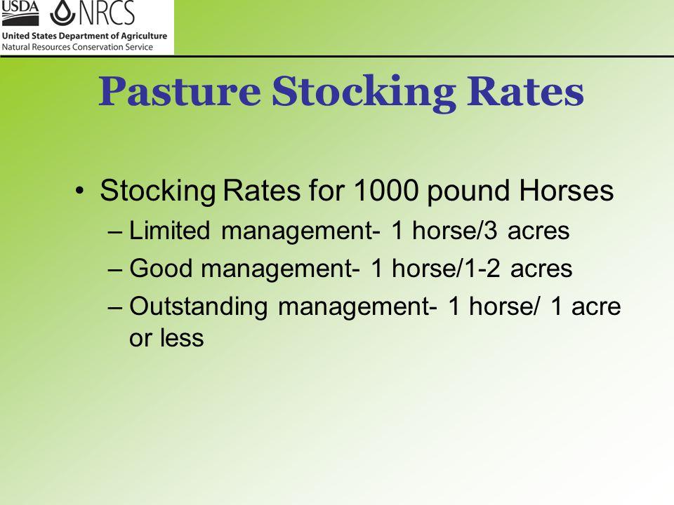 Pasture Stocking Rates