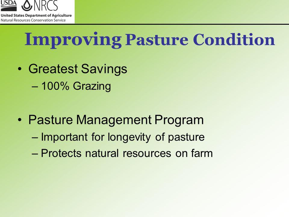 Improving Pasture Condition