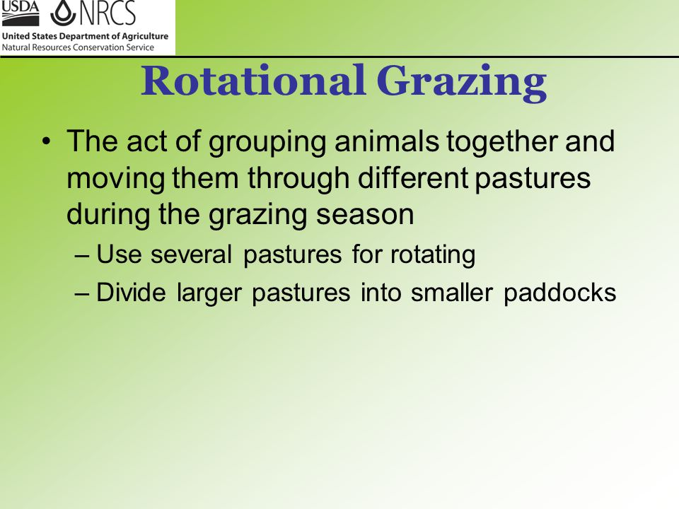 Rotational Grazing The act of grouping animals together and moving them through different pastures during the grazing season.