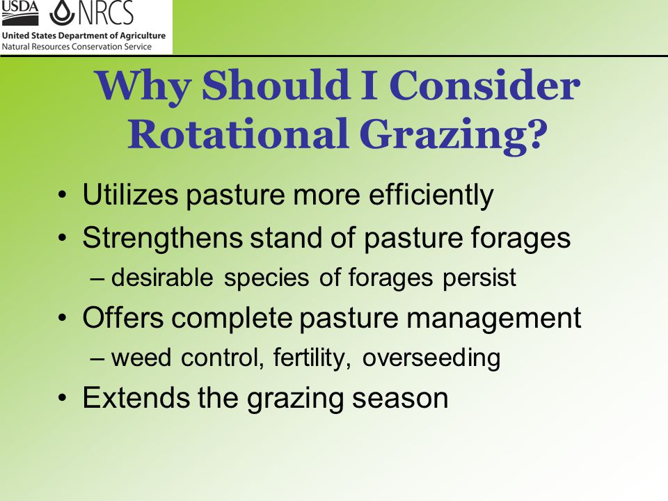 Why Should I Consider Rotational Grazing
