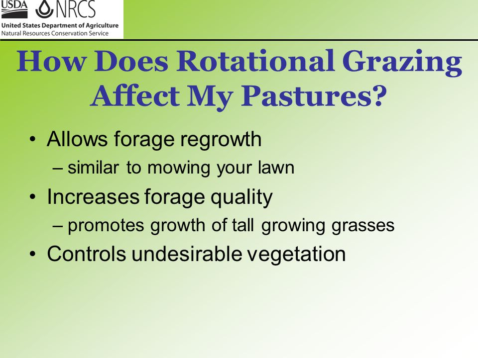 How Does Rotational Grazing Affect My Pastures