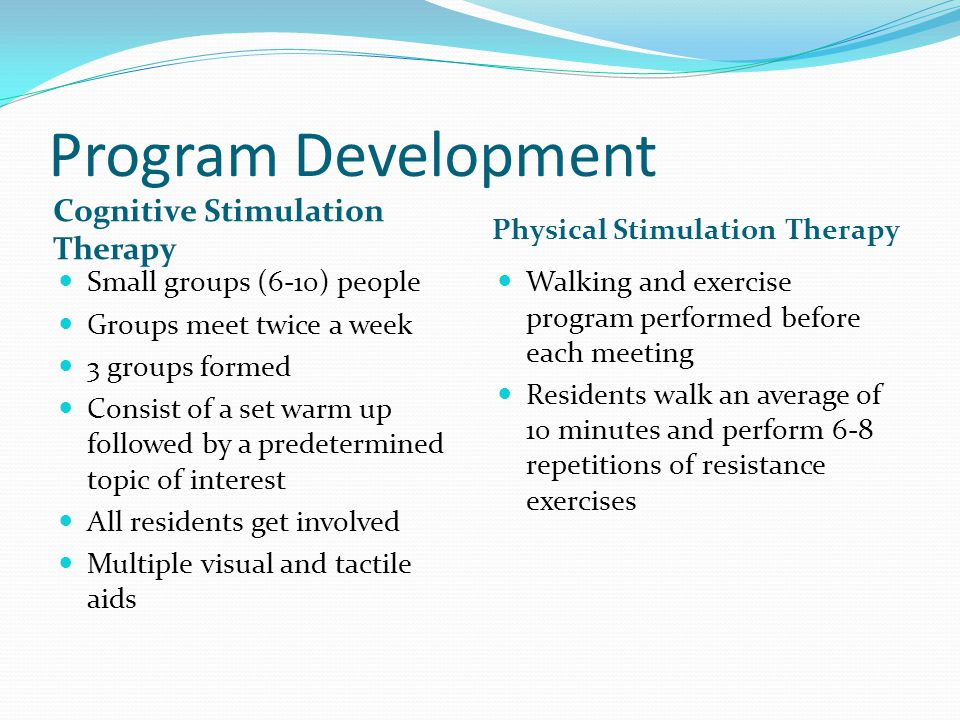 Program Development Cognitive Stimulation Therapy
