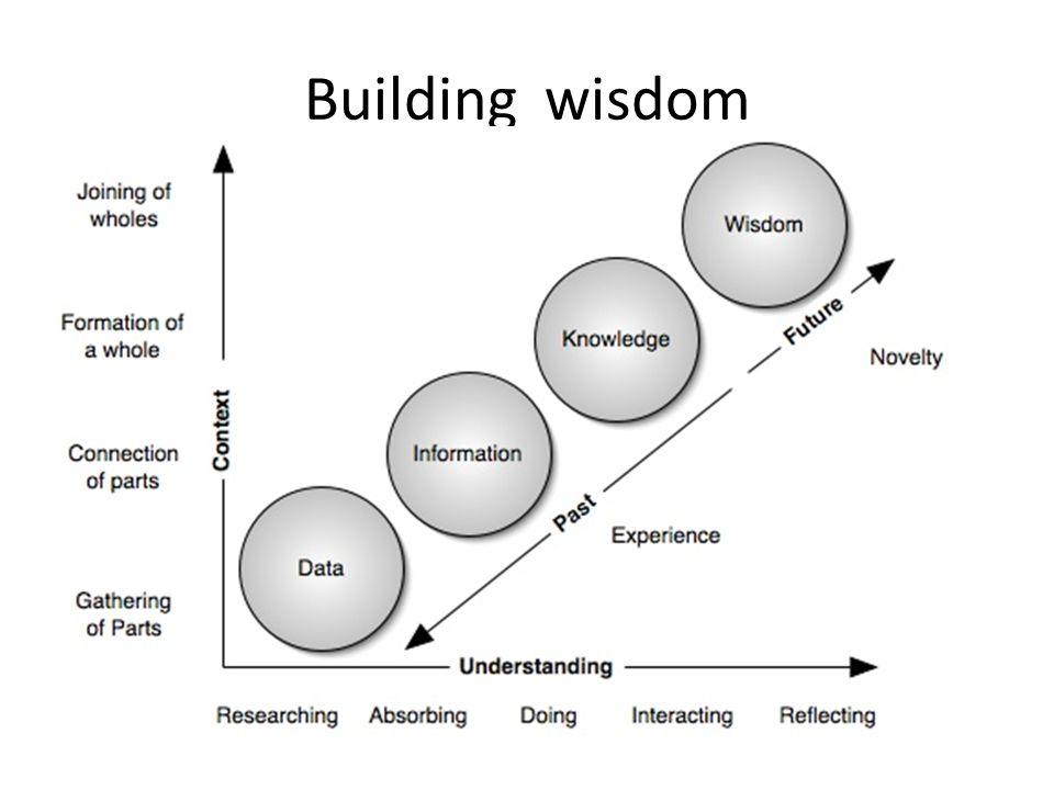 Building wisdom