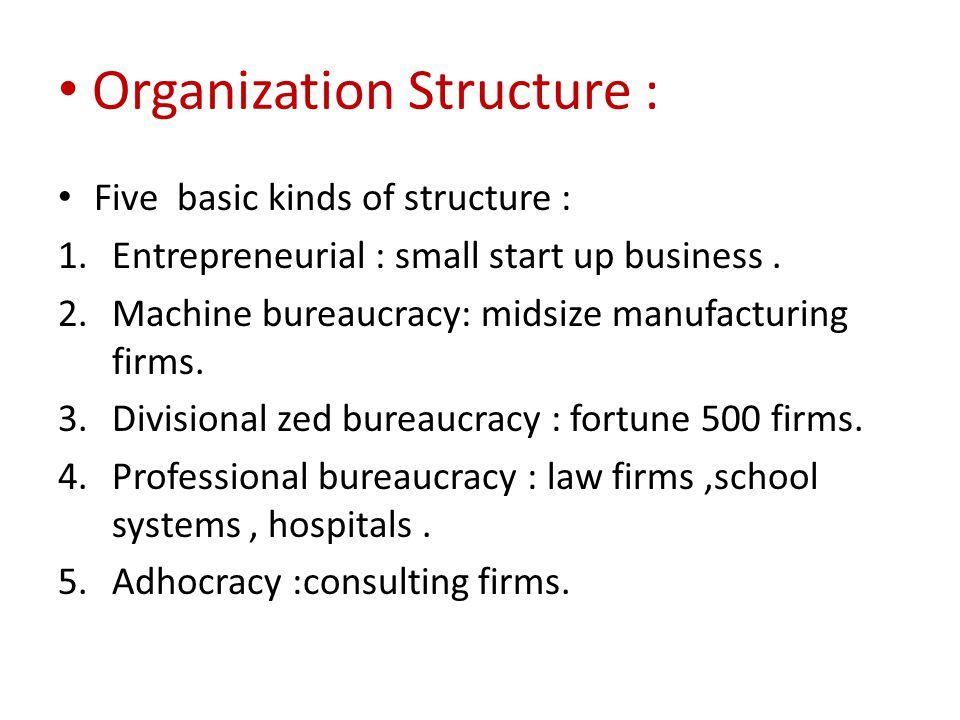 Organization Structure :