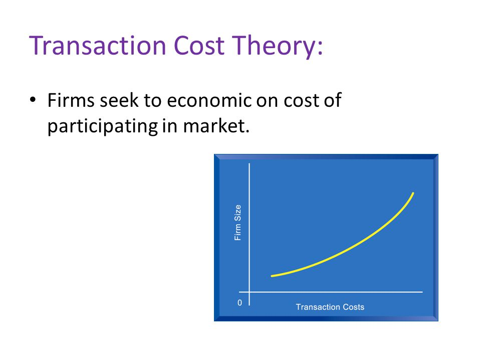 Transaction Cost Theory: