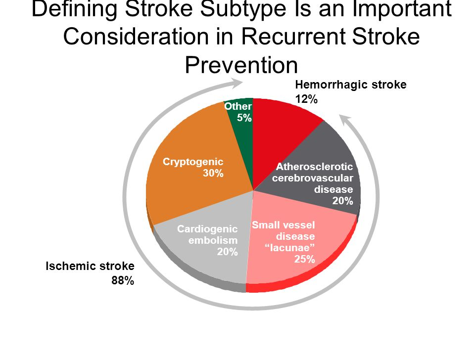 Defining Stroke Subtype Is an Important Consideration in Recurrent Stroke Prevention