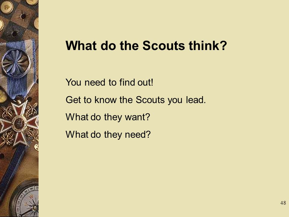 What do the Scouts think