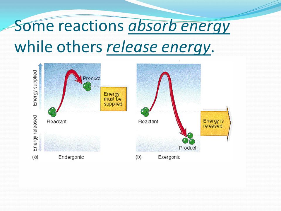 Some reactions absorb energy while others release energy.