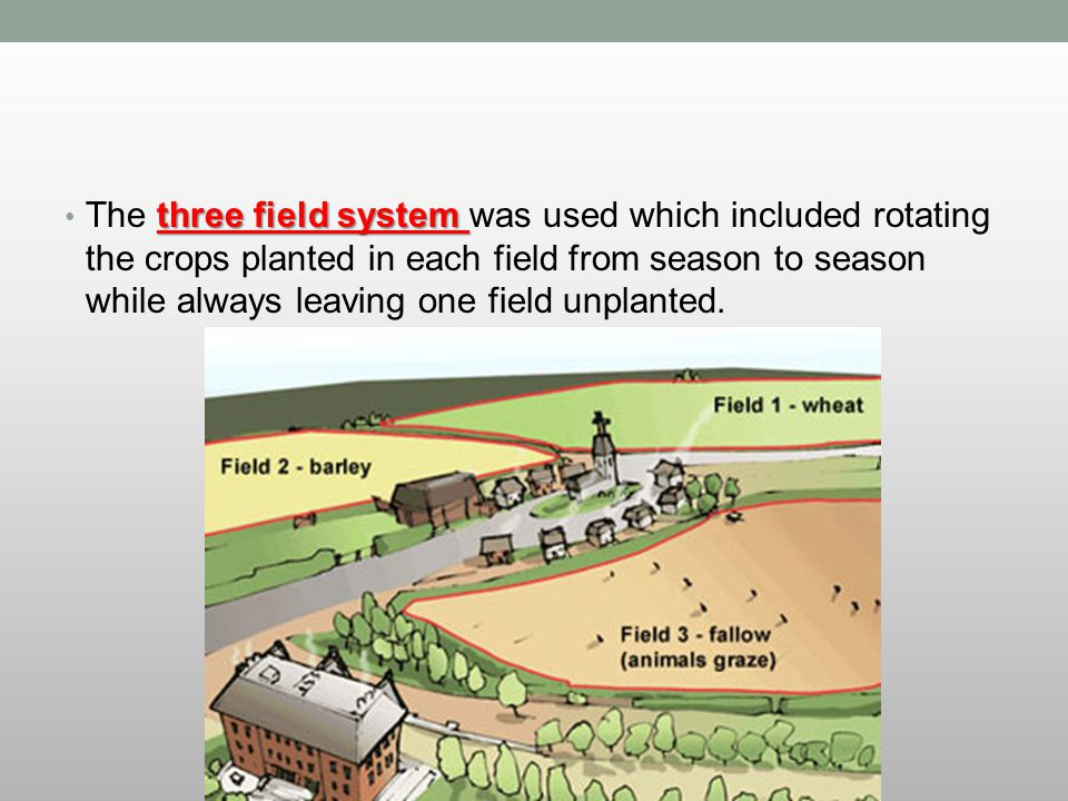 The three field system was used which included rotating the crops planted in each field from season to season while always leaving one field unplanted.