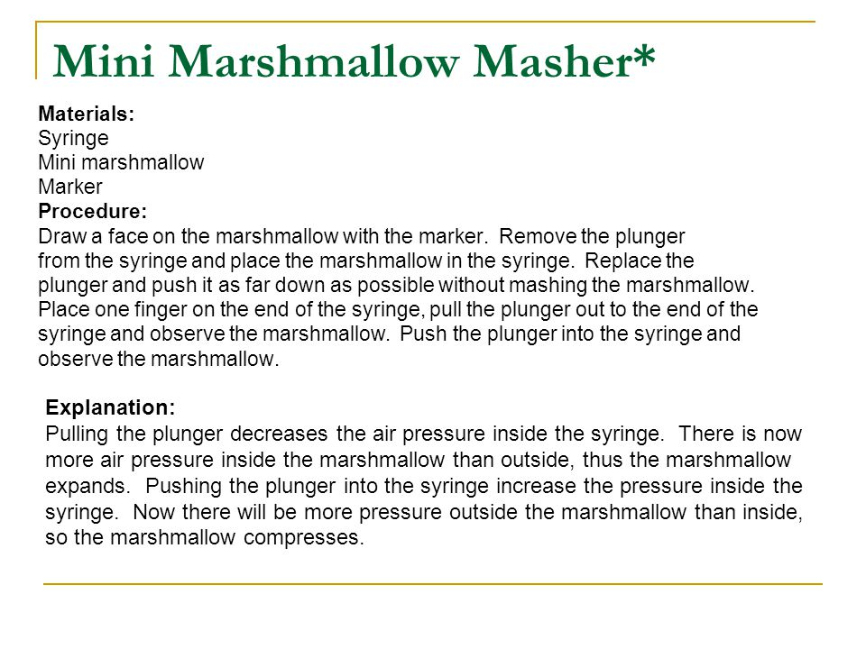 Mini Marshmallow Masher*