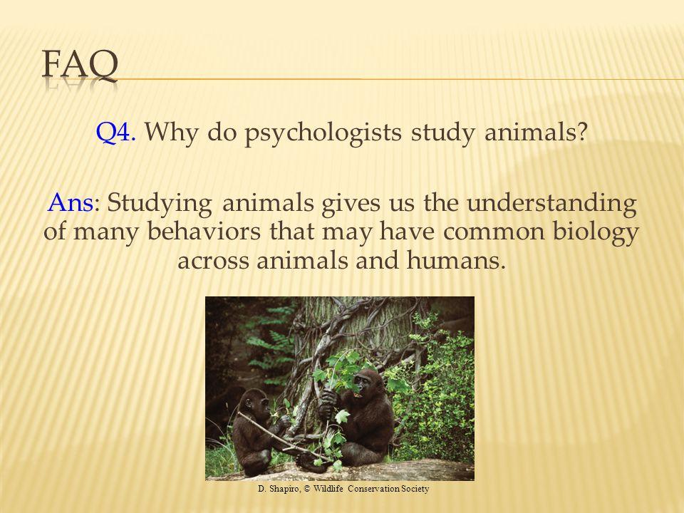 Q4. Why do psychologists study animals