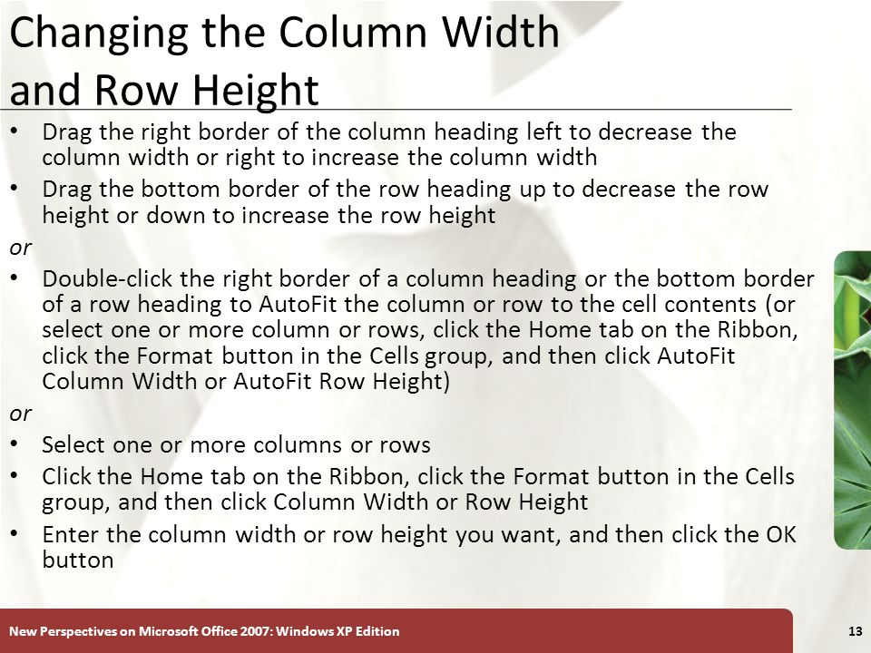 Changing the Column Width and Row Height