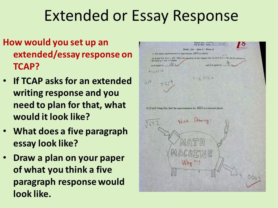 Extended or Essay Response