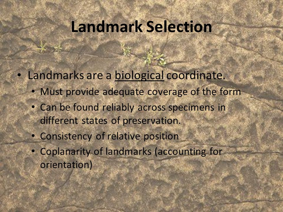 Landmark Selection Landmarks are a biological coordinate.