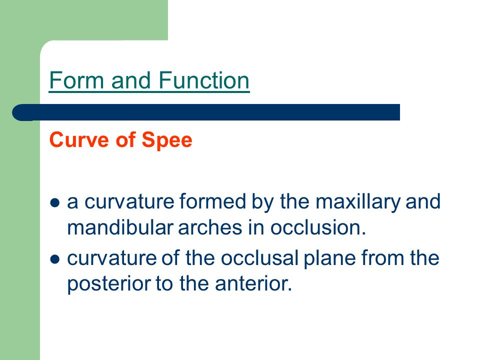 Form and Function Curve of Spee