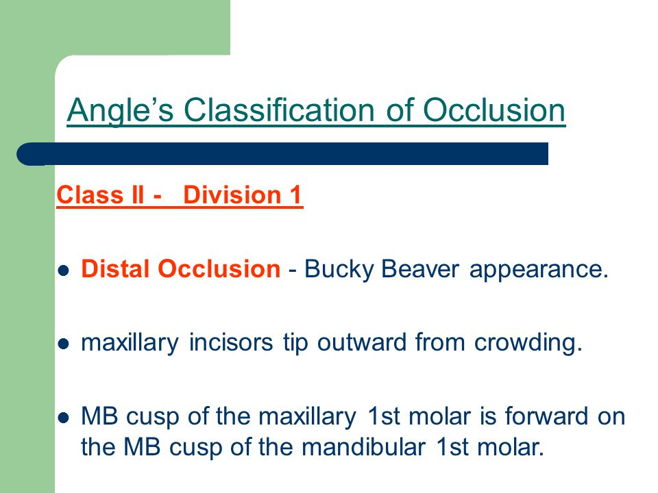 Angle's Classification of Occlusion