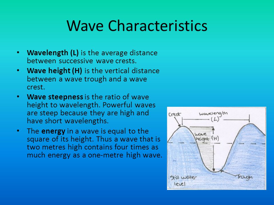 Wave Characteristics Wavelength (L) is the average distance between successive wave crests.