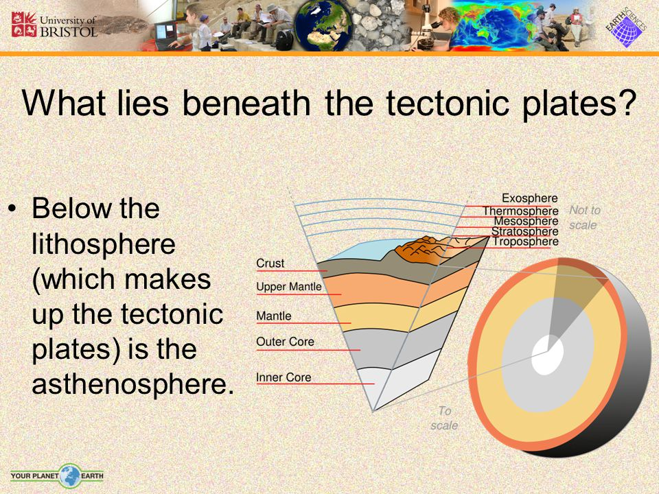 What lies beneath the tectonic plates