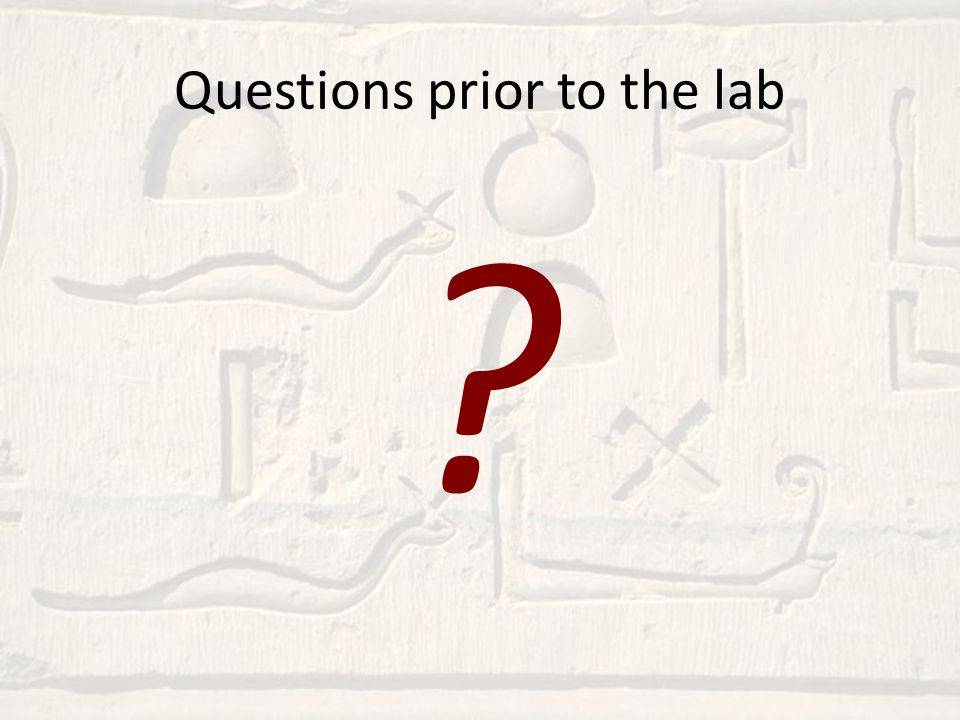 Questions prior to the lab