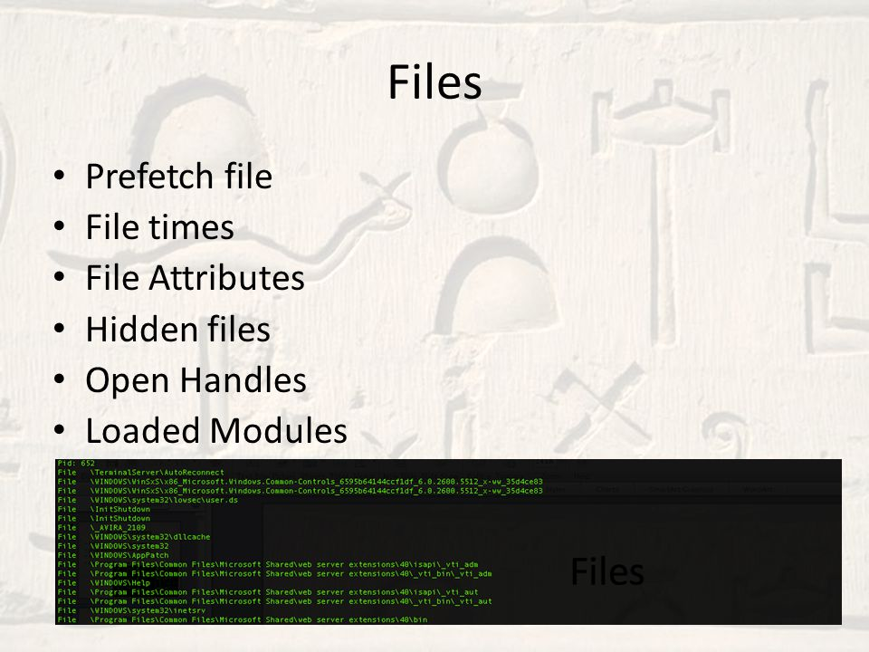 Files Prefetch file File times File Attributes Hidden files