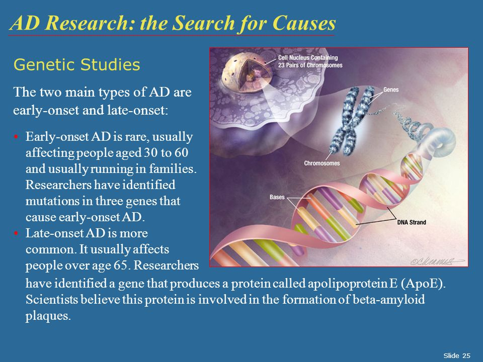 AD Research: the Search for Causes