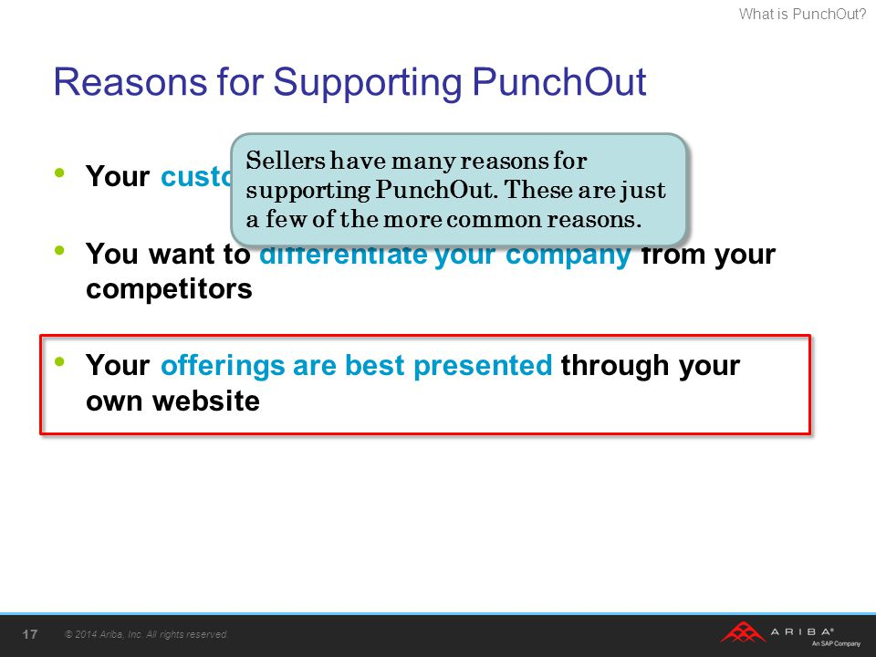 Reasons for Supporting PunchOut