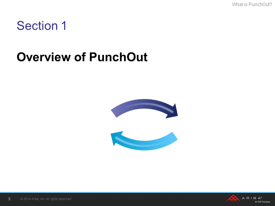 Section 1 Overview of PunchOut © 2014 Ariba, Inc. All rights reserved.
