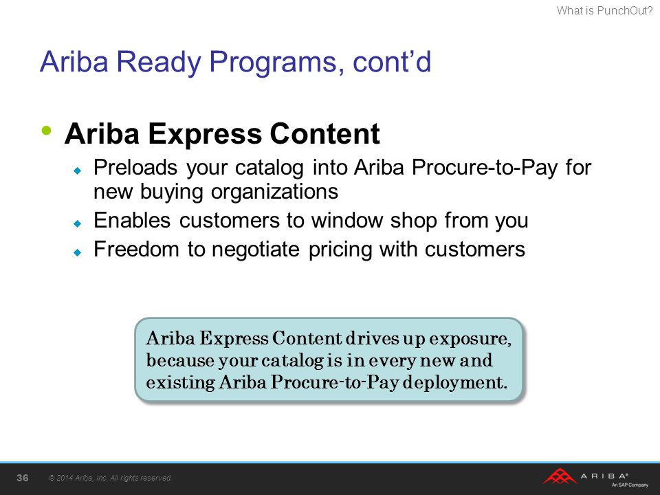 Ariba Ready Programs, cont'd