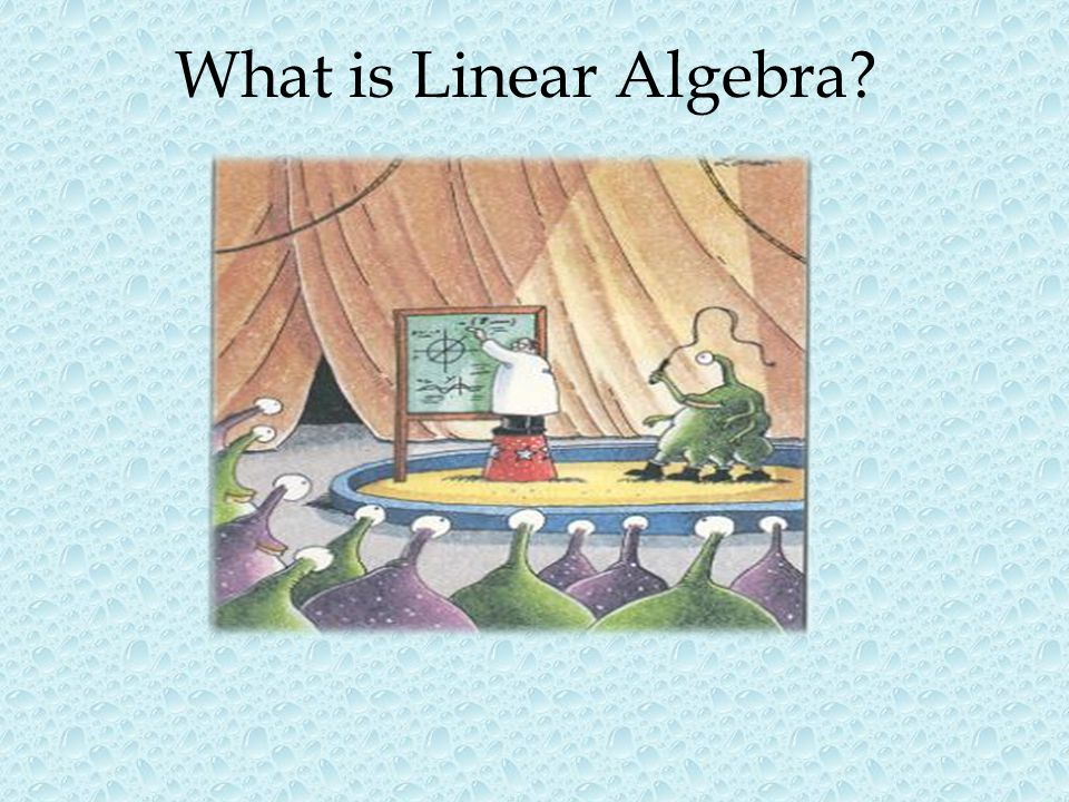 What is Linear Algebra Calculus comes from the Latin word calculus which were stones used for counting.