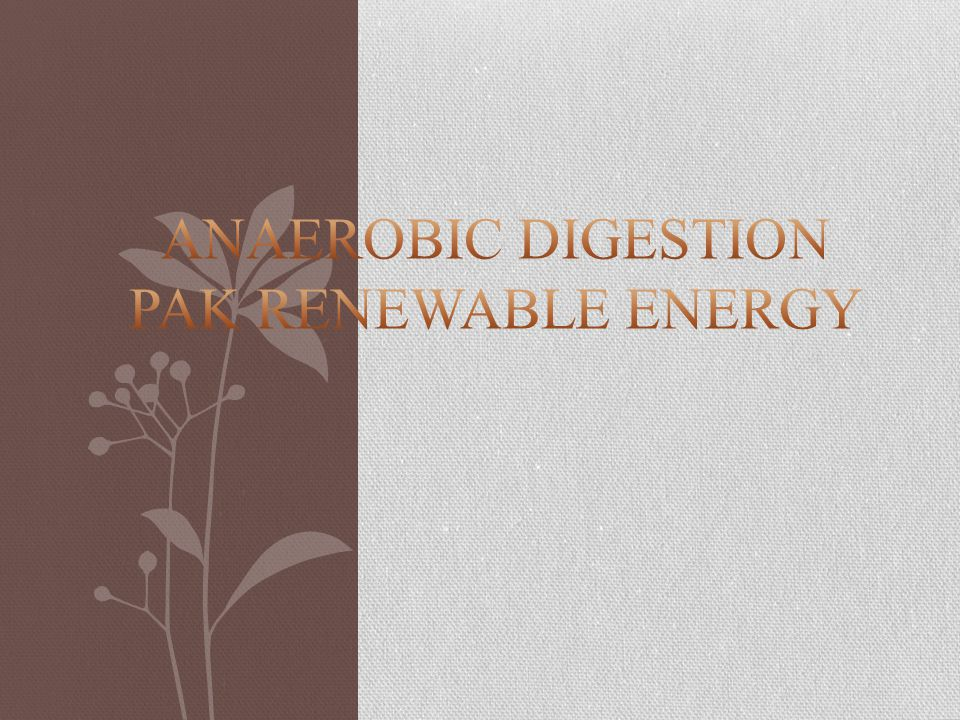 Anaerobic Digestion PAK RENEWABLE ENERGY