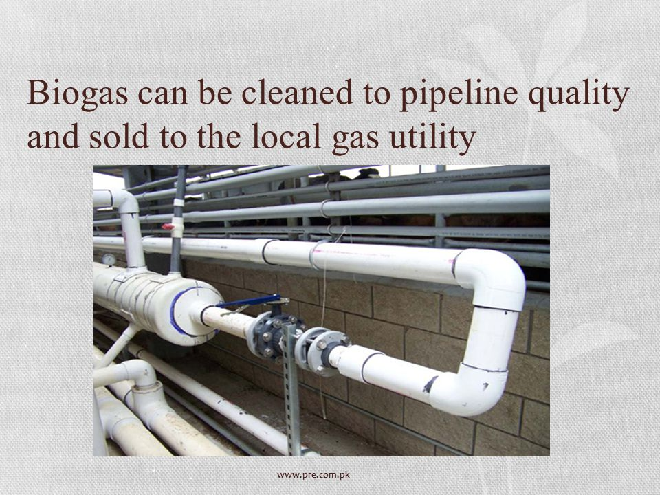 Biogas can be cleaned to pipeline quality and sold to the local gas utility