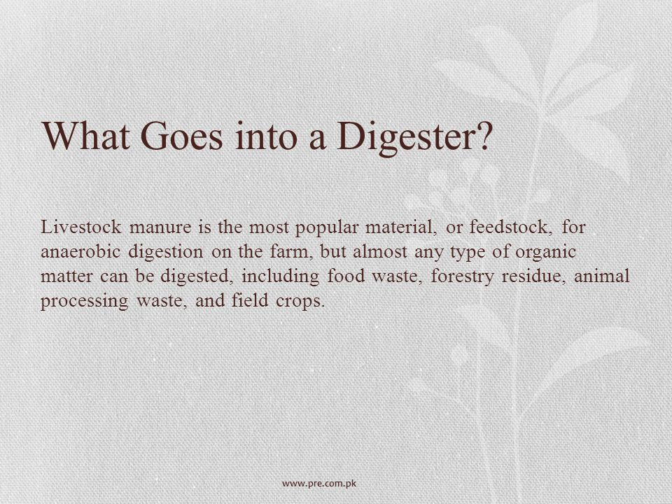 What Goes into a Digester