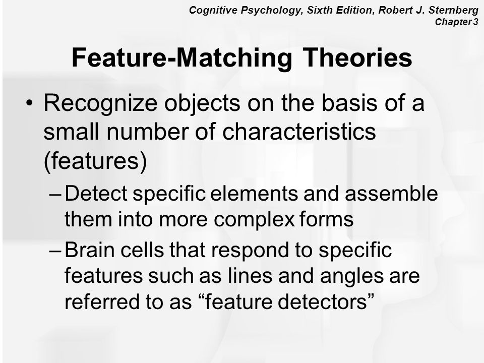 Feature-Matching Theories