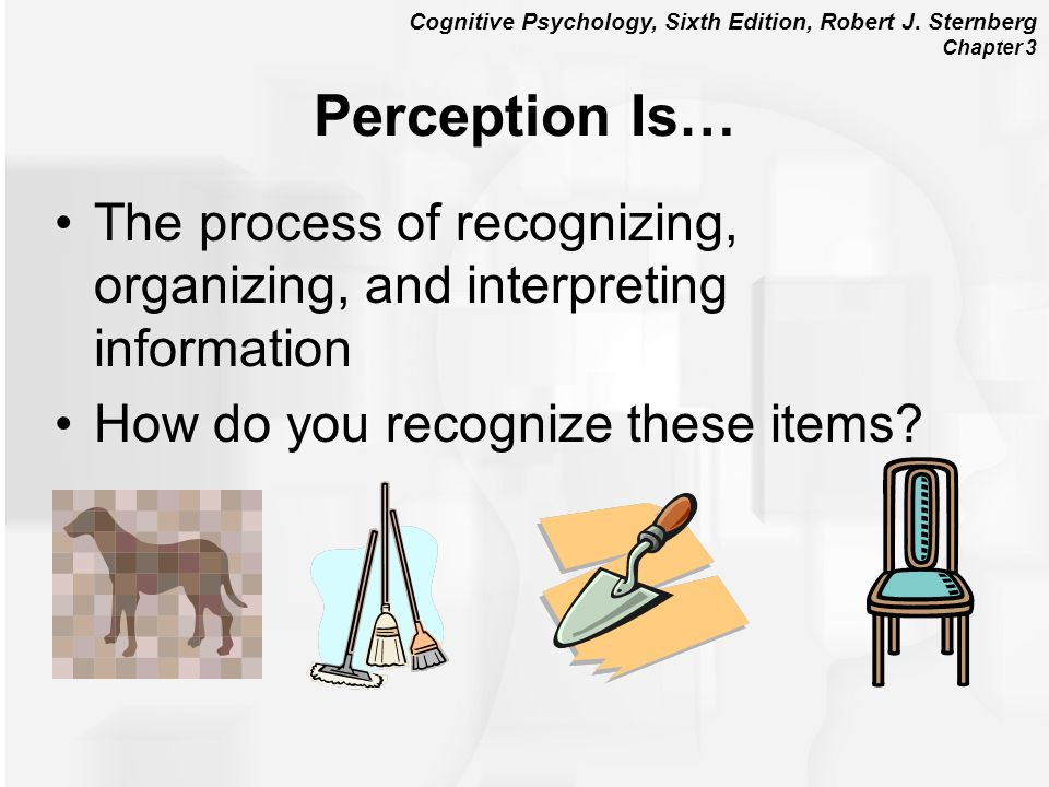 Perception Is… The process of recognizing, organizing, and interpreting information.