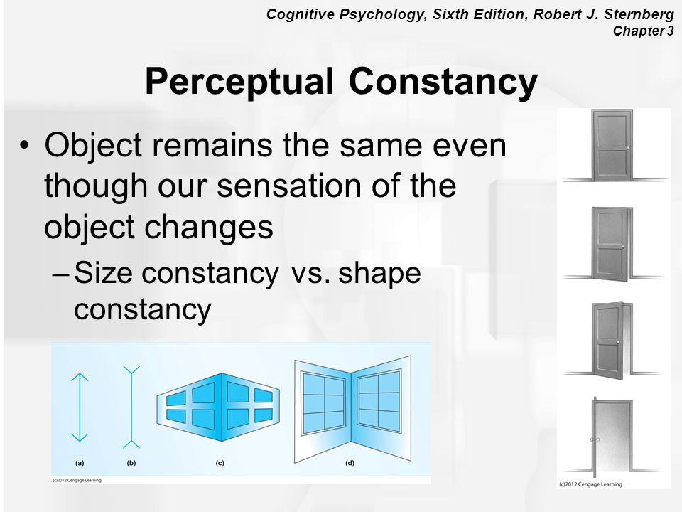 Perceptual Constancy Object remains the same even though our sensation of the object changes. Size constancy vs. shape constancy.