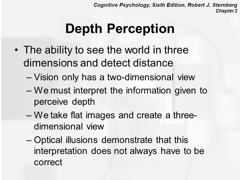 Depth Perception The ability to see the world in three dimensions and detect distance. Vision only has a two-dimensional view.