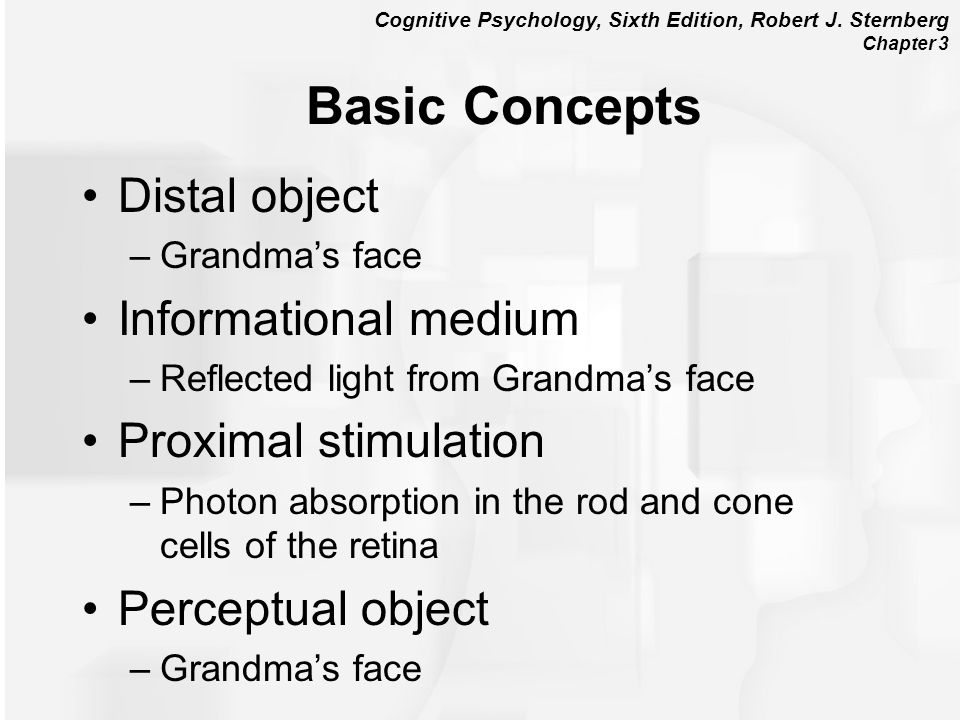 Basic Concepts Distal object Informational medium Proximal stimulation